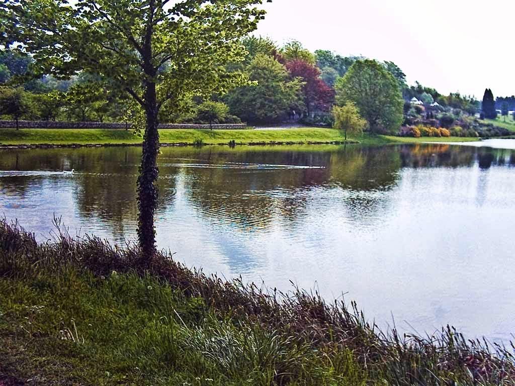 Photo: Pretty Leeds Castle grounds.