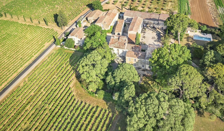 Vignoble Hérault