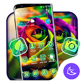 Colorful Rose APUS Launcher Theme Android APK Download Free By Cool Theme Team