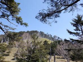 山頂方面の様子