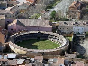 Photo: Toro. Plaza de toros