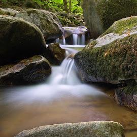 by Siniša Almaši - Nature Up Close Water ( water, stream, nature, cascade, forest, stones, landscape, light, rocks, river )