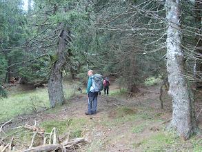 Photo: Scendiamo dal sentiero del Polentin.