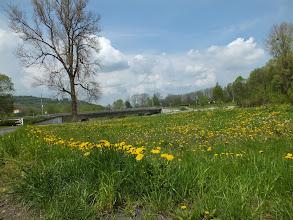 Photo: Cyklotrasa č. 59 u  Frýdlantu nad Ostravicí.