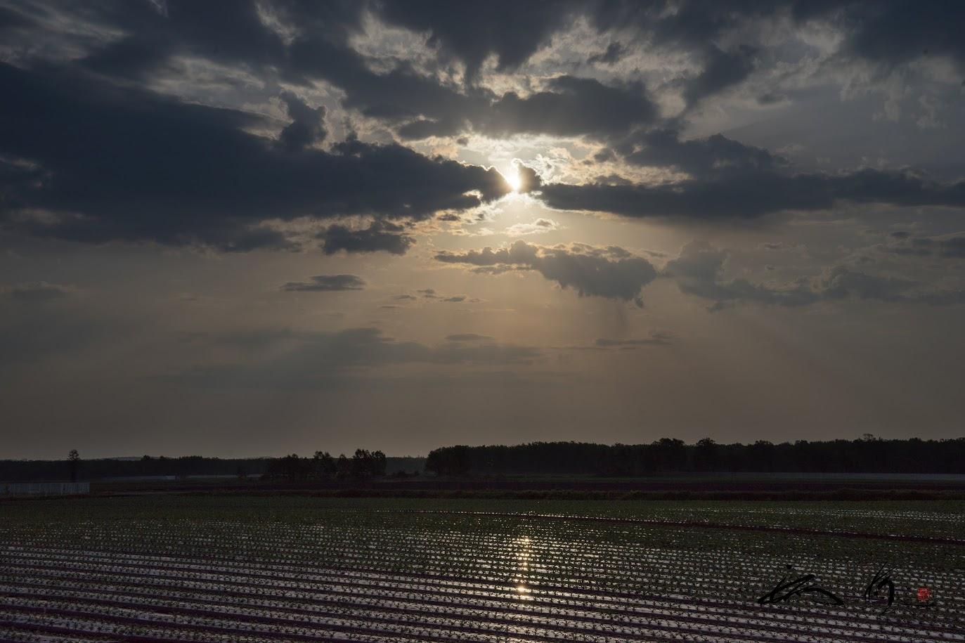 暗雲から照らし出す朝陽。。。