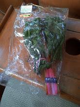 Photo: 保田で見つけた派手な野菜。 「スイスチャード」