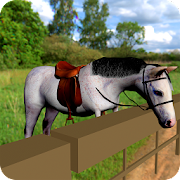 Cute Horse Pony Simulator Ride