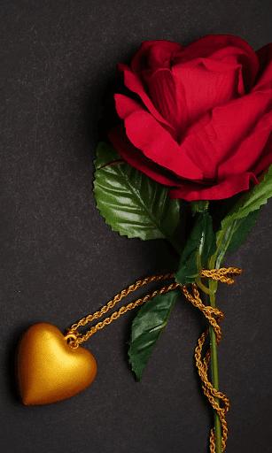 Love HD Mobile Wallpaper - HD Love Wallpapers