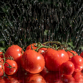Reflective Wet Tomatoes by Jim Downey - Food & Drink Fruits & Vegetables ( red, wetness, tomato, rain effect, harvest, water droplets, reflective )