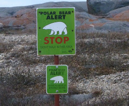 "Photo: These signs are posted on the tundra area, as well as in town...Sometimes the bears act ""badly""--getting into the garbage dump, or into town homes....if done repeatedly (training young cubs) the bears are ""rounded up"" and taken to the bear holding facility called ""Polar Bear Jail."""