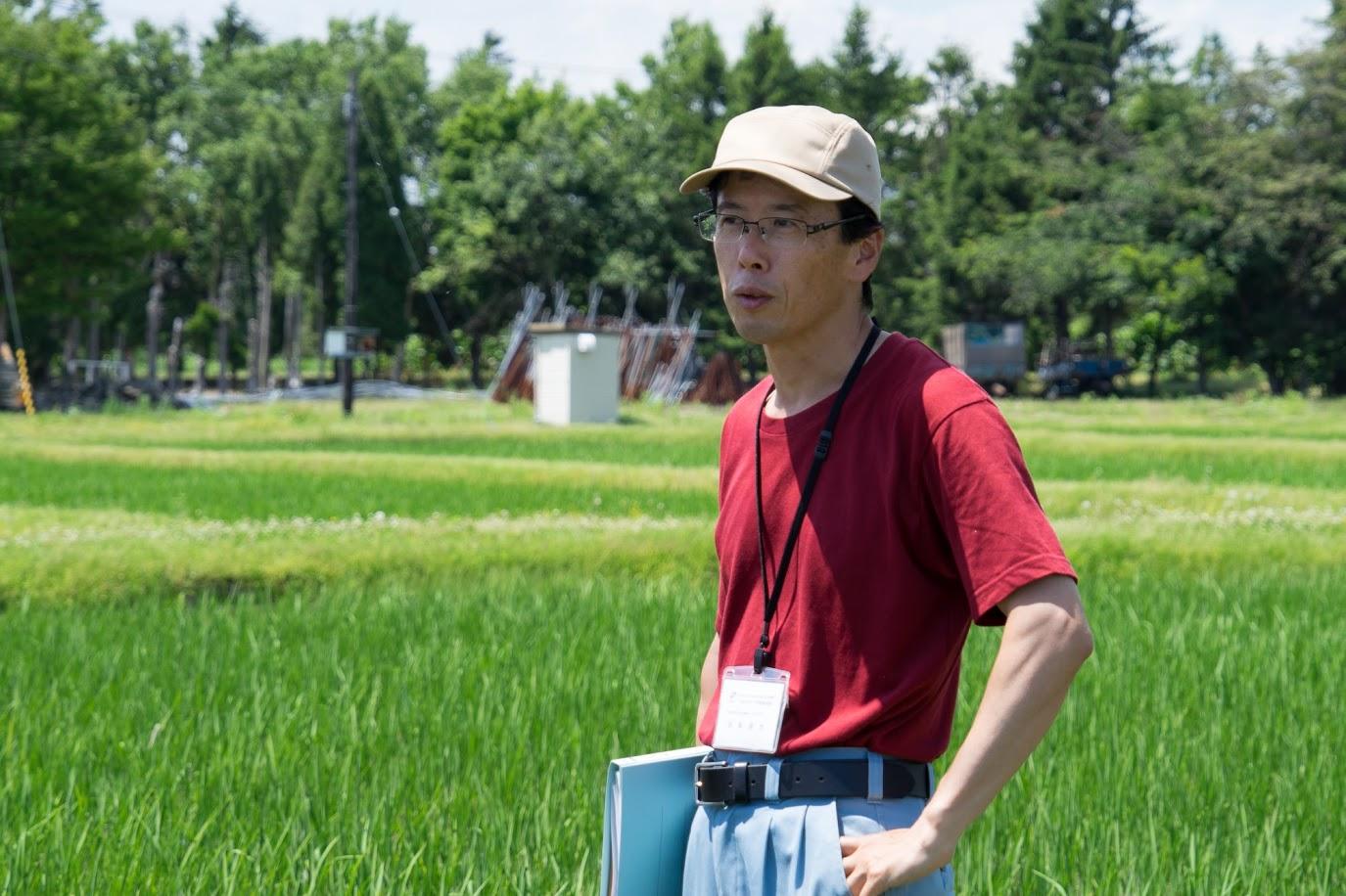 水田農業Gの生産研究部門・フォームレターは、トランクを調べました