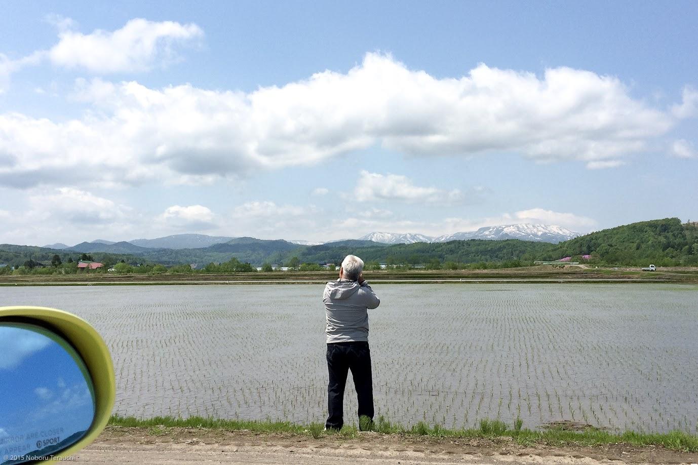 オカン撮影(北竜町の農道にて:2015年5月22日)