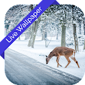 3D Winter Nature LWP icon