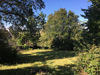 terrain à Landerneau (29)
