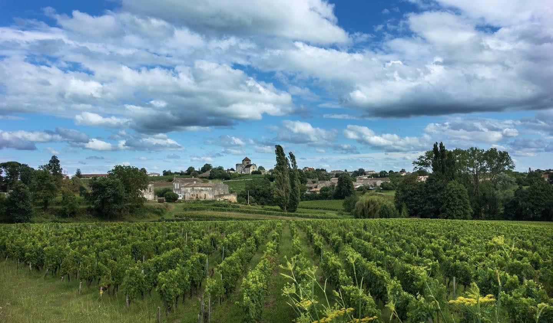 Vignoble Saint-Sulpice-de-Faleyrens