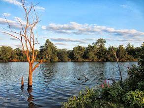 Photo: Sunset on a pretty pond at Eastwood Park in Dayton, Ohio.