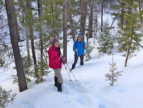 Photo: January 18 - Tenmile Trail near Rimini