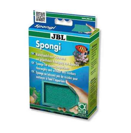 Spongi Rengöringssvamp
