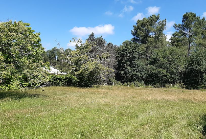 Vente Terrain à bâtir - 513m² à Béguey (33410)