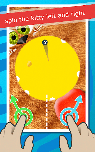 Cat Games: Spin the Kitty Free