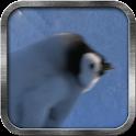 Baby Penguin Live Wallpaper icon