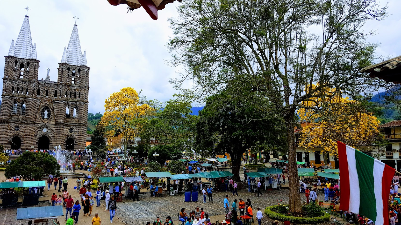 Festival del Amarillo Guayacan
