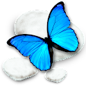 Blue Butterfly CM Theme icon