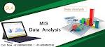 Best MIS Training Course Institute in Delhi-NCR : SLA Consultants India