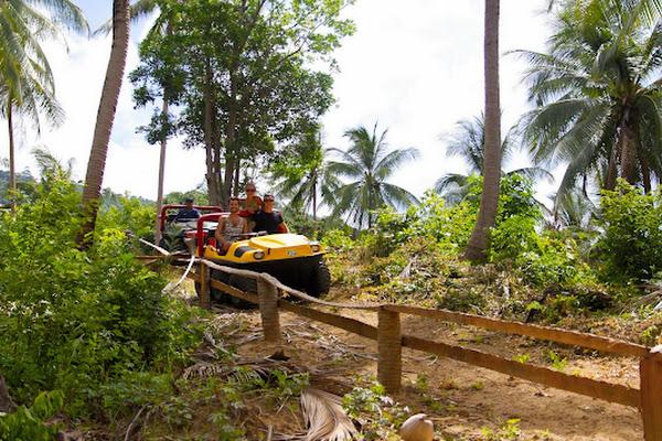 Drive an amphibious all-terrain vehicle