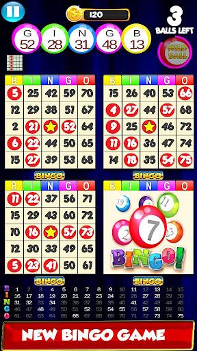 Bingo: New Free Cards Game Vegas and Casino Feel  screenshots 3