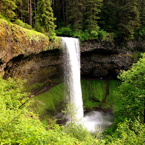 Silver Falls State Park, Oregon, USA by Bharath Booshan - Landscapes Waterscapes