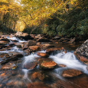 Unnamed Creek by Bill Frische - Landscapes Waterscapes ( forest, mountains, woodland, rapid, rock, stream bed, bank, water resources, creek, fall, stream, any vision, waterfall, wood, smokey, flow, motion, rapids, reflection, nature, cascade, tree, deciduous, fluvial landforms of streams, tributary, leaf, state park, water, labels, body of water, photograph, outdoors, w, nature reserve, plant, watercourse, wilderness, autumn, river, travel, landscape, water feature )