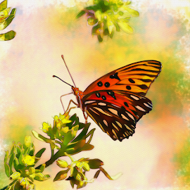 Passion Butterfly II by Thomas Pound - Digital Art Animals ( watercolor, butterfly, passion butterfly, butterflies, insects, photoshop )