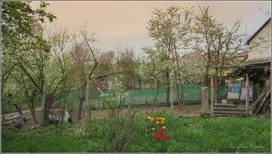 Photo: Turda - Str. Salinelor, Nr.15 - casa rurala - fosta casa  familiei Goia , gradina (parasita), vederevecin dreapta - 2018.04.15