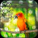 Bird sound and puzzle icon