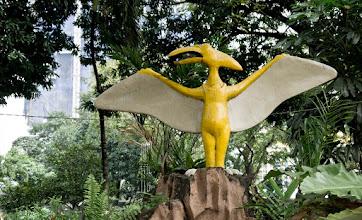 Photo: Bienvenue aux Philippines, pays de tous les ptérodactyles.