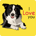 Cute Border Collies Wallpaper icon