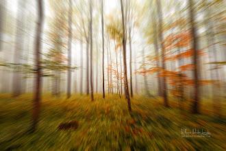 Photo: Autumn Go Fast