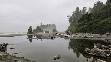 Photo: Third day morning at Ruby beach. It was cloudy. the photos were original, were not retouched.