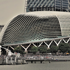by Koh Chip Whye - Buildings & Architecture Architectural Detail
