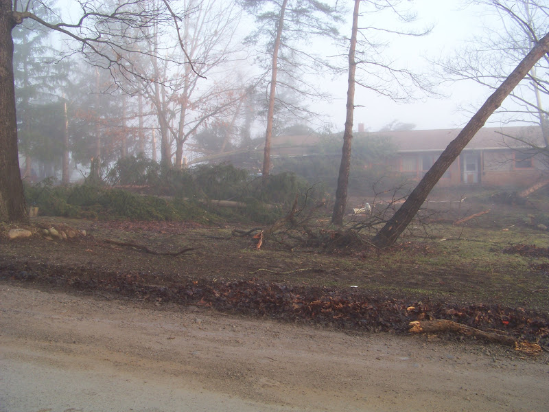 Photo: More of across the street and three doors down. Taken when it was still pretty foggy in the early morning.