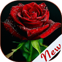 Flowers and Roses Images Gifs icon