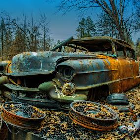 by Michael Mercer - Transportation Automobiles