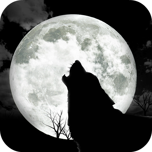 Moon Phases 天氣 App LOGO-硬是要APP