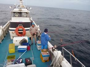 Photo: 最近、ちまたでは「インフルエンザ」、沖では「シイラ」が猛威をふるっています。 ・・・シイラも進化しているのでしょうか?もう二月になろうかとしてるのに。
