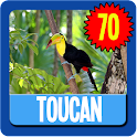 Toucan Wallpaper HD Complete icon