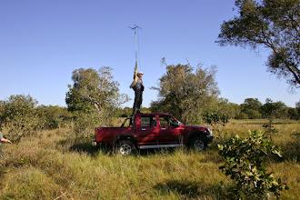 Photo: Radio tracking