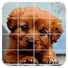 com.appham.tilepuzzles.puppies.android