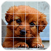 Tile Puzzles · Puppies