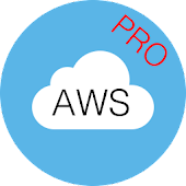 PRO. AWS Certified Solutions Architect Associate Icon